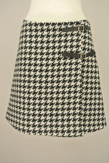 alberto biani(アルベルトビアーニ)スカート買取実績の前画像