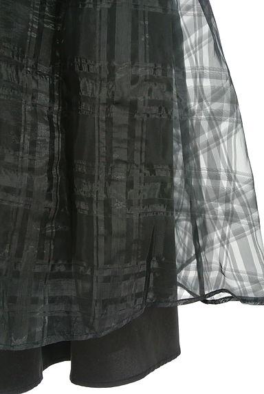 DOUBLE STANDARD CLOTHING(ダブルスタンダードクロージング)レディース スカート PR10197109大画像5へ