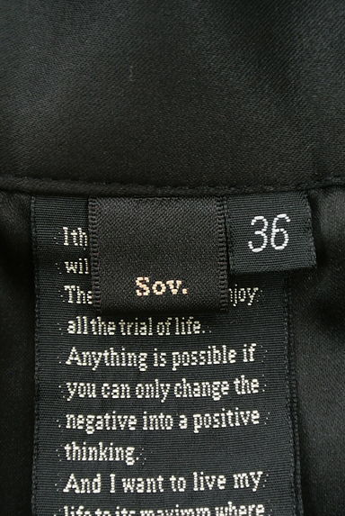 DOUBLE STANDARD CLOTHING(ダブルスタンダードクロージング)レディース スカート PR10197109大画像6へ