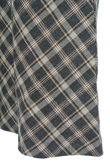 Aylesbury(アリスバーリー)レディース スカート PR10202852大画像5へ