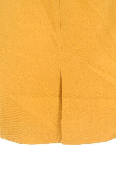 Apuweiser riche(アプワイザーリッシェ)レディース スカート PR10218191大画像5へ