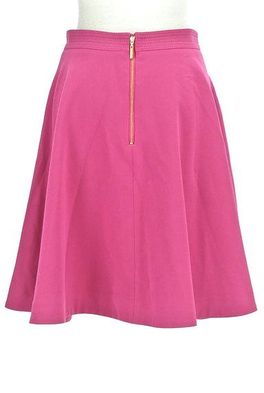 Pinky&Dianne(ピンキー&ダイアン)の古着「バックファスナーフレアスカート(スカート)」大画像2へ