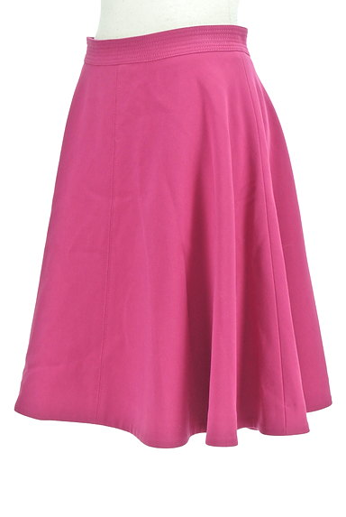 Pinky&Dianne(ピンキー&ダイアン)の古着「バックファスナーフレアスカート(スカート)」大画像3へ