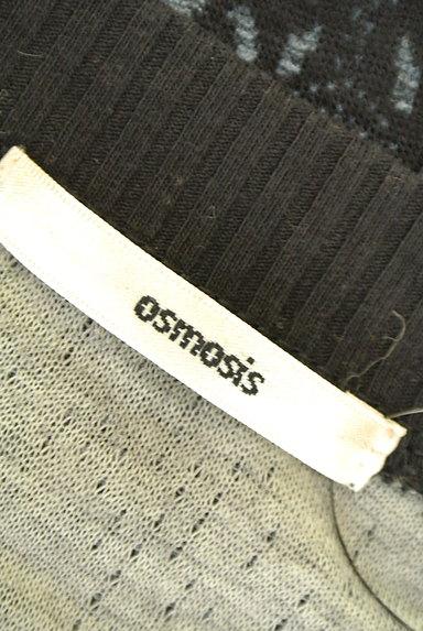 OSMOSIS(オズモーシス)の古着「オリエンタル柄カットソー(カットソー・プルオーバー)」大画像6へ