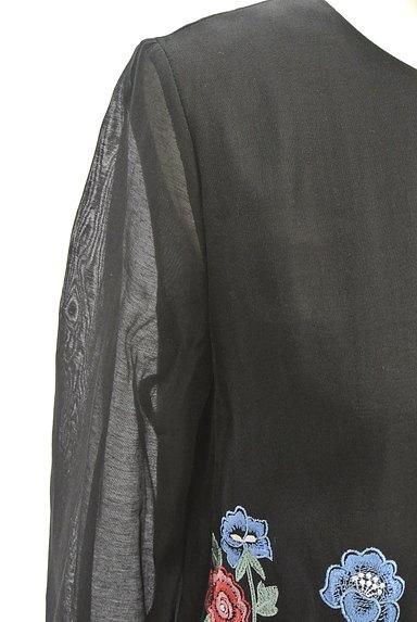 deicy(デイシー)の古着「花柄刺繍シアー7分袖ワンピース(ワンピース・チュニック)」大画像4へ