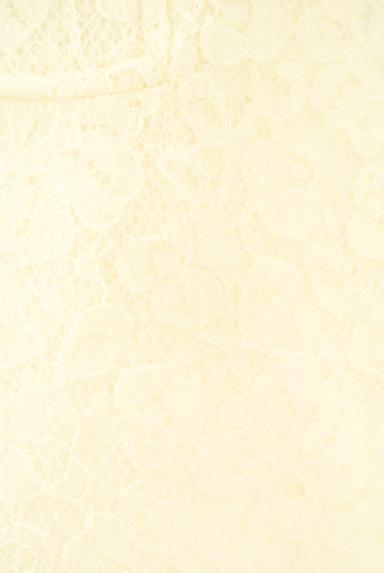Te chichi(テチチ)の古着「総レースフレアニットスカート(ミニスカート)」大画像5へ