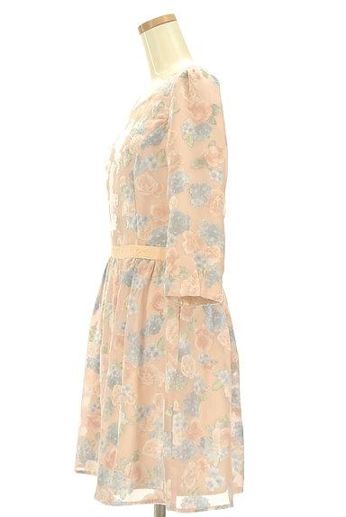 LAISSE PASSE(レッセパッセ)の古着「ベロア花柄シアーワンピース(ワンピース・チュニック)」大画像3へ