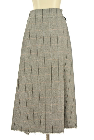 alcali(アルカリ)スカート買取実績の前画像