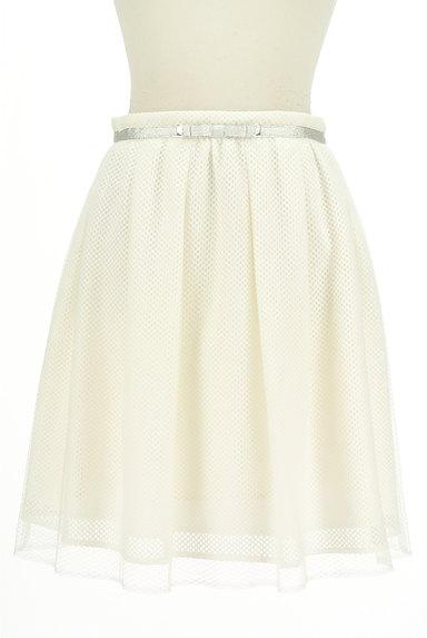 MISCH MASCH(ミッシュマッシュ)の古着「メッシュ+チュールミディ丈スカート(スカート)」大画像1へ