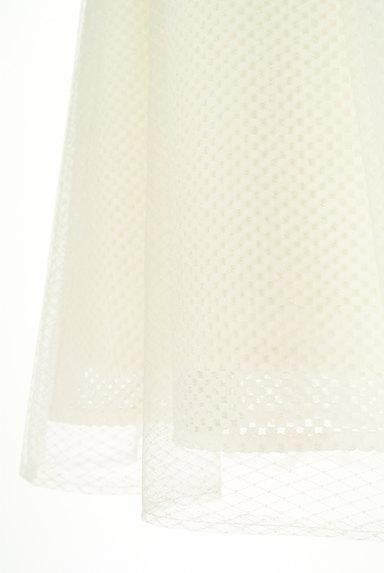 MISCH MASCH(ミッシュマッシュ)の古着「メッシュ+チュールミディ丈スカート(スカート)」大画像5へ