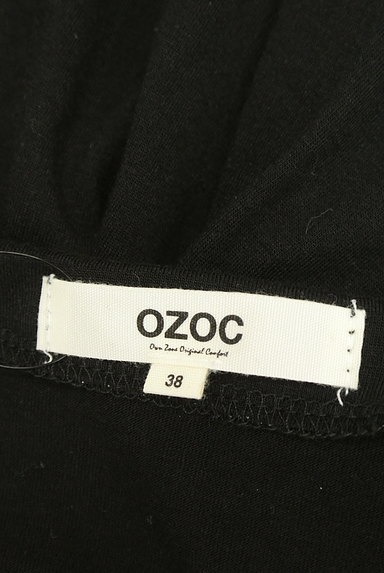OZOC(オゾック)の古着「刺繍半袖カットソー(カットソー・プルオーバー)」大画像6へ