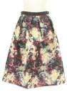 NATURAL BEAUTY(ナチュラルビューティ)の古着「スカート」前