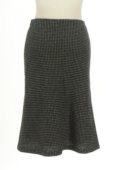 ANAYI(アナイ)の古着「モノトーンセミフレアスカート(スカート)」大画像2へ