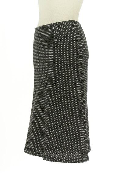 ANAYI(アナイ)の古着「モノトーンセミフレアスカート(スカート)」大画像3へ