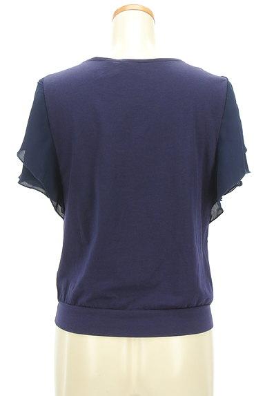 COUP DE CHANCE(クードシャンス)の古着「袖シフォンカットソー(カットソー・プルオーバー)」大画像2へ