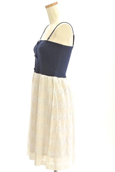 Rouge vif La cle(ルージュヴィフラクレ)の古着「シアーレースボーダーキャミワンピ(キャミワンピース)」大画像3へ