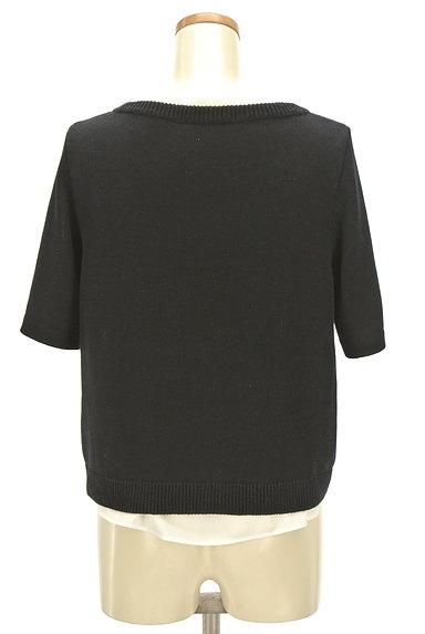 NATURAL BEAUTY(ナチュラルビューティ)の古着「レイヤード風デザイン半袖ニット(ニット)」大画像2へ