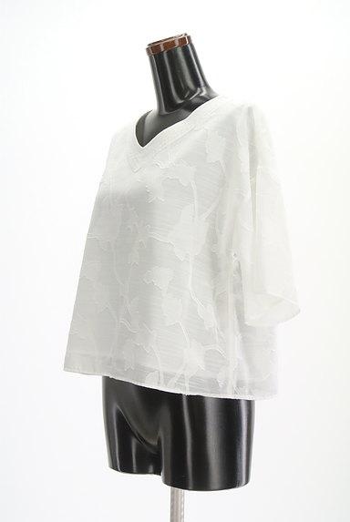 Te chichi(テチチ)の古着「ボタニカル柄五分袖ブラウス(カットソー・プルオーバー)」大画像3へ