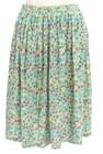 NIMES(ニーム)の古着「スカート」前
