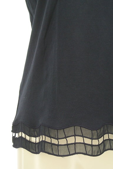 BEAUTY&YOUTH(ビューティ&ユース)の古着「オーガンジー刺繍カットソー(カットソー・プルオーバー)」大画像5へ