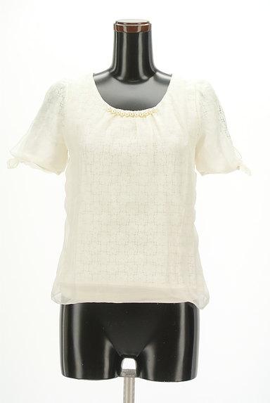 WILLSELECTION(ウィルセレクション)の古着「シアー刺繍シフォンカットソー(カットソー・プルオーバー)」大画像1へ