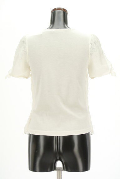 WILLSELECTION(ウィルセレクション)の古着「シアー刺繍シフォンカットソー(カットソー・プルオーバー)」大画像2へ