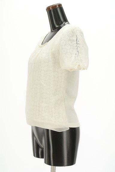 WILLSELECTION(ウィルセレクション)の古着「シアー刺繍シフォンカットソー(カットソー・プルオーバー)」大画像3へ
