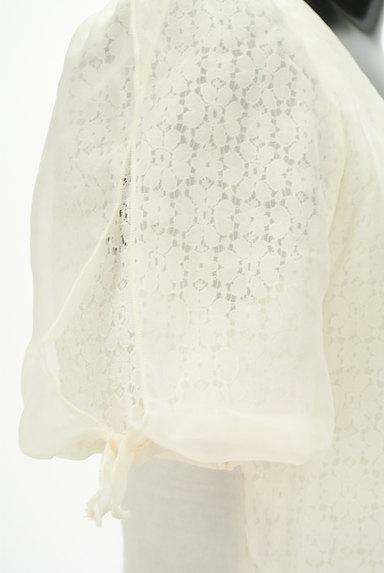 WILLSELECTION(ウィルセレクション)の古着「シアー刺繍シフォンカットソー(カットソー・プルオーバー)」大画像5へ