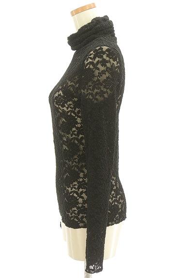 Lois CRAYON(ロイスクレヨン)の古着「総刺繍レースタートルネックカットソー(カットソー・プルオーバー)」大画像3へ