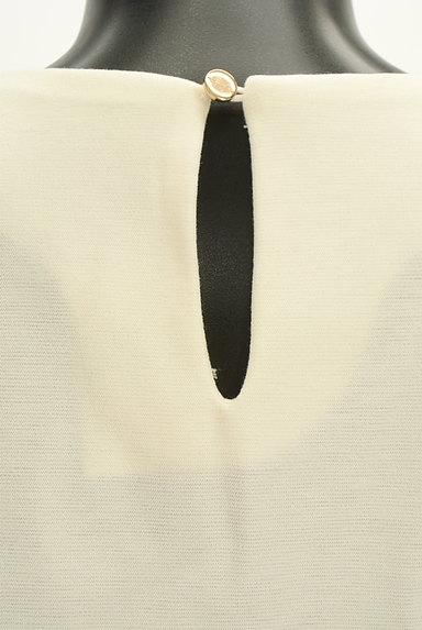 VICKY(ビッキー)の古着「花刺繍レースVネックカットソー(カットソー・プルオーバー)」大画像5へ
