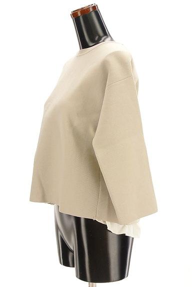 Rouge vif La cle(ルージュヴィフラクレ)の古着「背面レイヤードストレッチカットソー(ニット)」大画像3へ