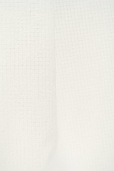 SLOBE IENA(スローブイエナ)の古着「膝下丈フレアスカート(スカート)」大画像5へ