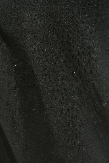 axes femme(アクシーズファム)の古着「ベロアフリル襟カットソー(カットソー・プルオーバー)」大画像5へ