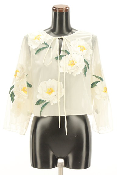 Snidel(スナイデル)の古着「フローラル刺繍チュールカットソー(カットソー・プルオーバー)」大画像1へ
