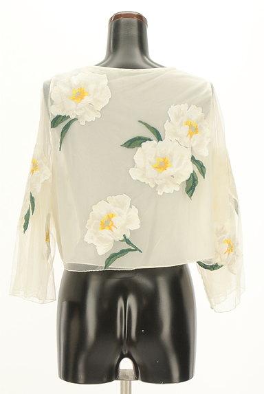 Snidel(スナイデル)の古着「フローラル刺繍チュールカットソー(カットソー・プルオーバー)」大画像2へ