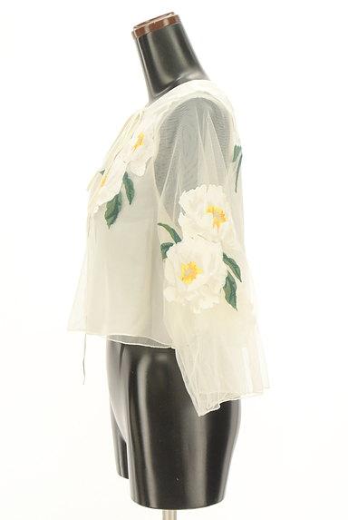 Snidel(スナイデル)の古着「フローラル刺繍チュールカットソー(カットソー・プルオーバー)」大画像3へ