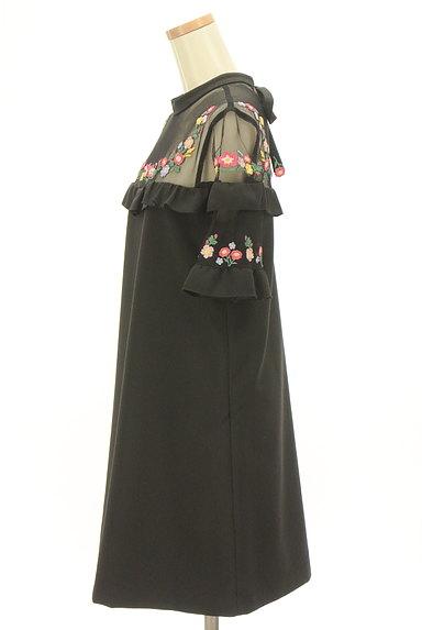 Lily Brown(リリーブラウン)の古着「刺繍シースルー切替ワンピース(ワンピース・チュニック)」大画像3へ