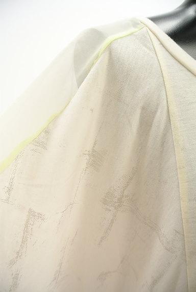 alcali(アルカリ)の古着「ラメ箔プリントドルマンカットソー(カットソー・プルオーバー)」大画像4へ