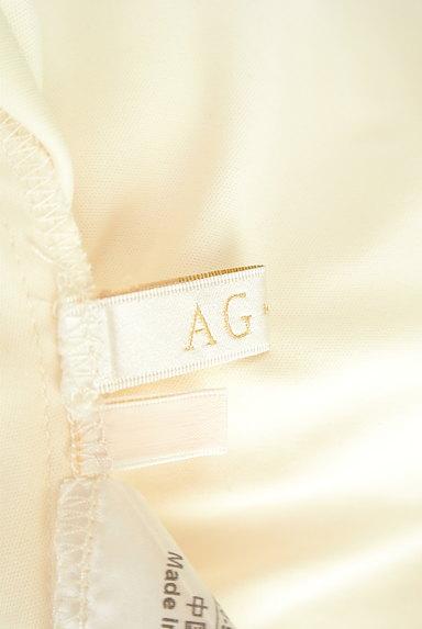 AG by aquagirl(エージーバイアクアガール)の古着「エアリーシフォンカットソー(カットソー・プルオーバー)」大画像6へ