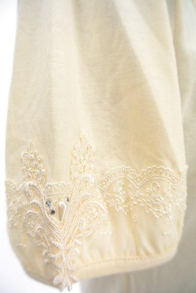 axes femme(アクシーズファム)の古着「刺繍レースカットソー(カットソー・プルオーバー)」大画像5へ