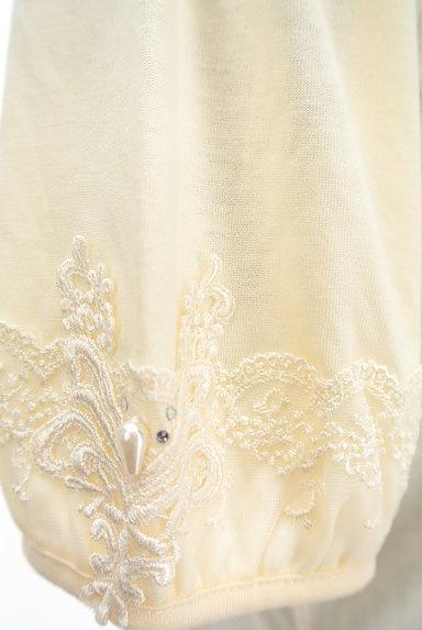 axes femme(アクシーズファム)の古着「装飾刺繍レースカットソー(カットソー・プルオーバー)」大画像5へ