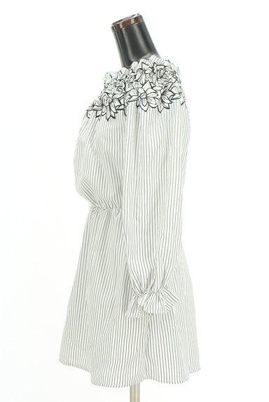 rienda(リエンダ)の古着「刺繍ストライプ柄オフショルカットソー(カットソー・プルオーバー)」大画像3へ