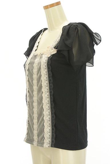 axes femme(アクシーズファム)の古着「シフォン袖レース切替カットソー(カットソー・プルオーバー)」大画像3へ