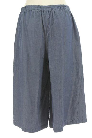 Sally Scott(サリースコット)の古着「シャンブレー膝下丈ハーフパンツ(ショートパンツ・ハーフパンツ)」大画像2へ
