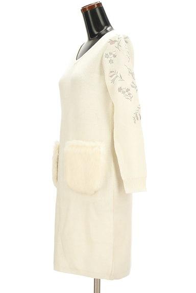 MISCH MASCH(ミッシュマッシュ)の古着「ファーポケット刺繍ニットワンピ(ワンピース・チュニック)」大画像3へ