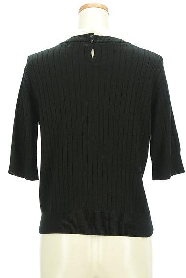 AG by aquagirl(エージーバイアクアガール)の古着「シフォンフリル五分袖リブニット(ニット)」大画像2へ