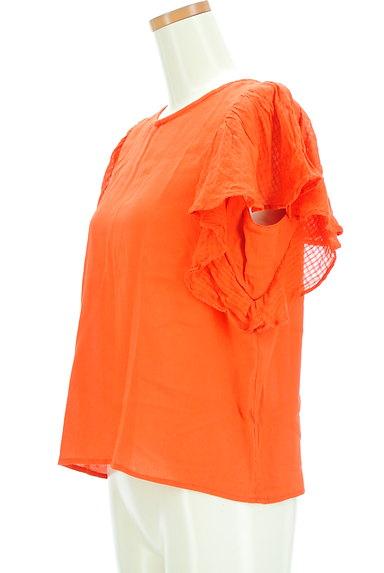 A.I.C(エーアイシー)の古着「フリル袖シアーカットソー(カットソー・プルオーバー)」大画像3へ