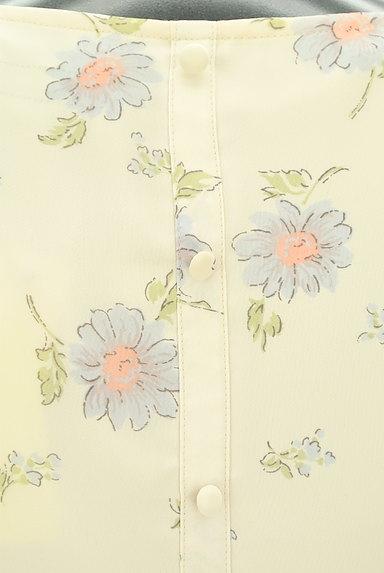 MISCH MASCH(ミッシュマッシュ)の古着「レトロ花柄シフォンワンピース(ワンピース・チュニック)」大画像5へ