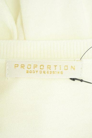 PROPORTION BODY DRESSING(プロポーションボディ ドレッシング)の古着「シアー花刺繍ニット(ニット)」大画像6へ