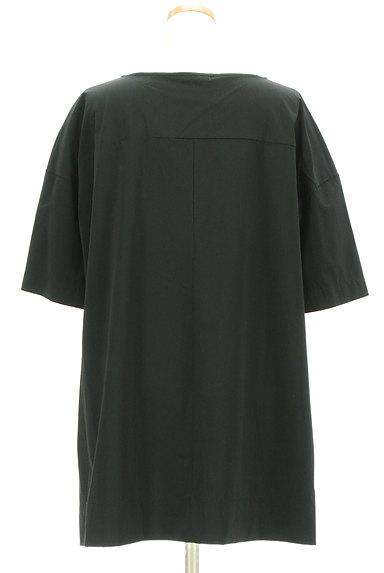 PLST(プラステ)の古着「オーバーサイズ6分袖カットソー(カットソー・プルオーバー)」大画像2へ